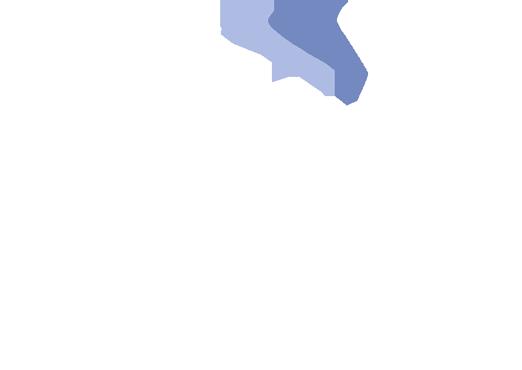 Silent Alert International
